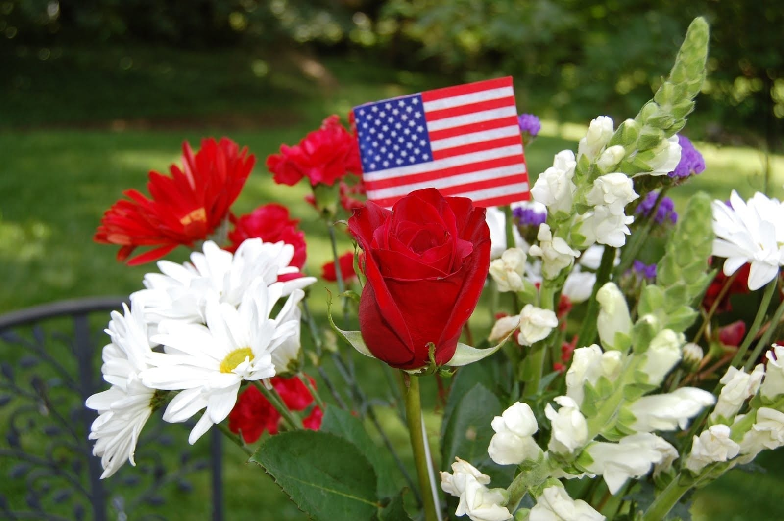 Red White Blue Flowers With Flag Fiesta Flowers Plants Gifts