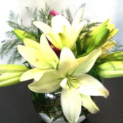 Bubble Bowl Lilies