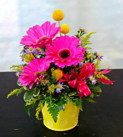 SAME DAY DELIVERY Cheerful Gerbera Bouquet