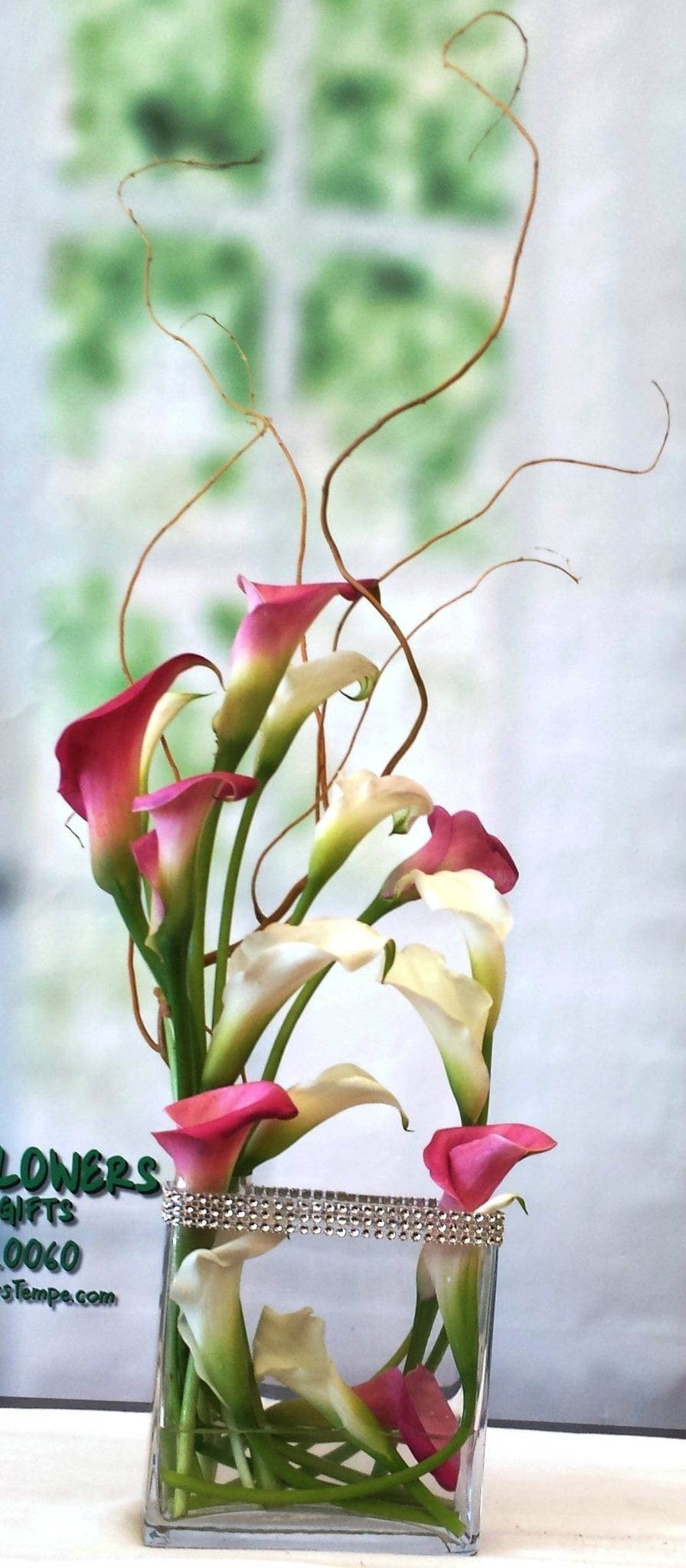 NEXT DAY DELIVERY - Fiesta Calla Lily Garden