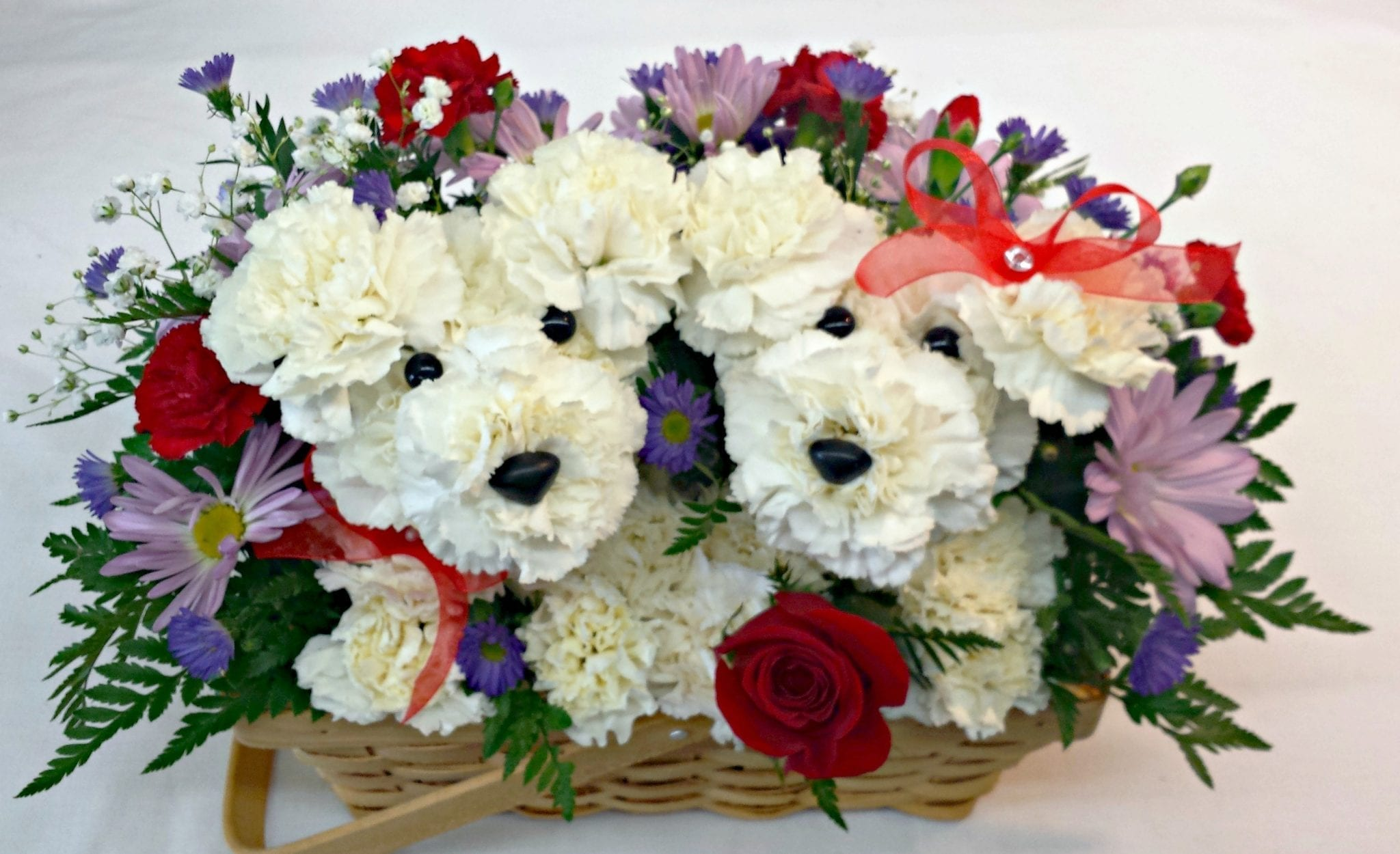 Same Day Delivery Love Pups P 9013 Fiesta Flowers Plants