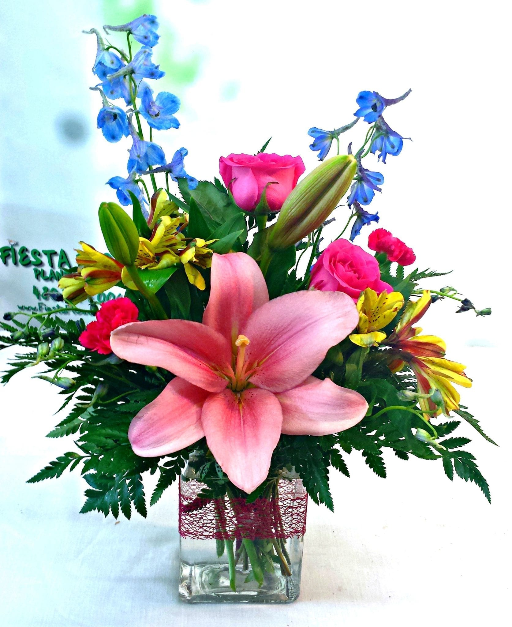 Simple Splendor Same Day Delivery Fiesta Flowers Plants & Gifts
