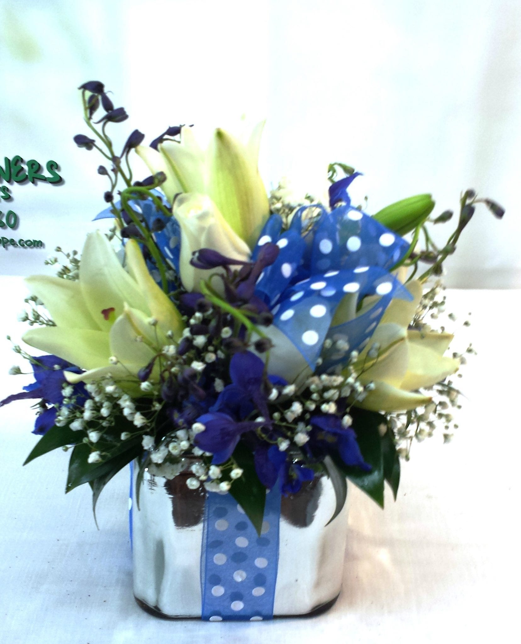 SAME DAY DELIVERY All Wrapped Up In Blue- Deluxe