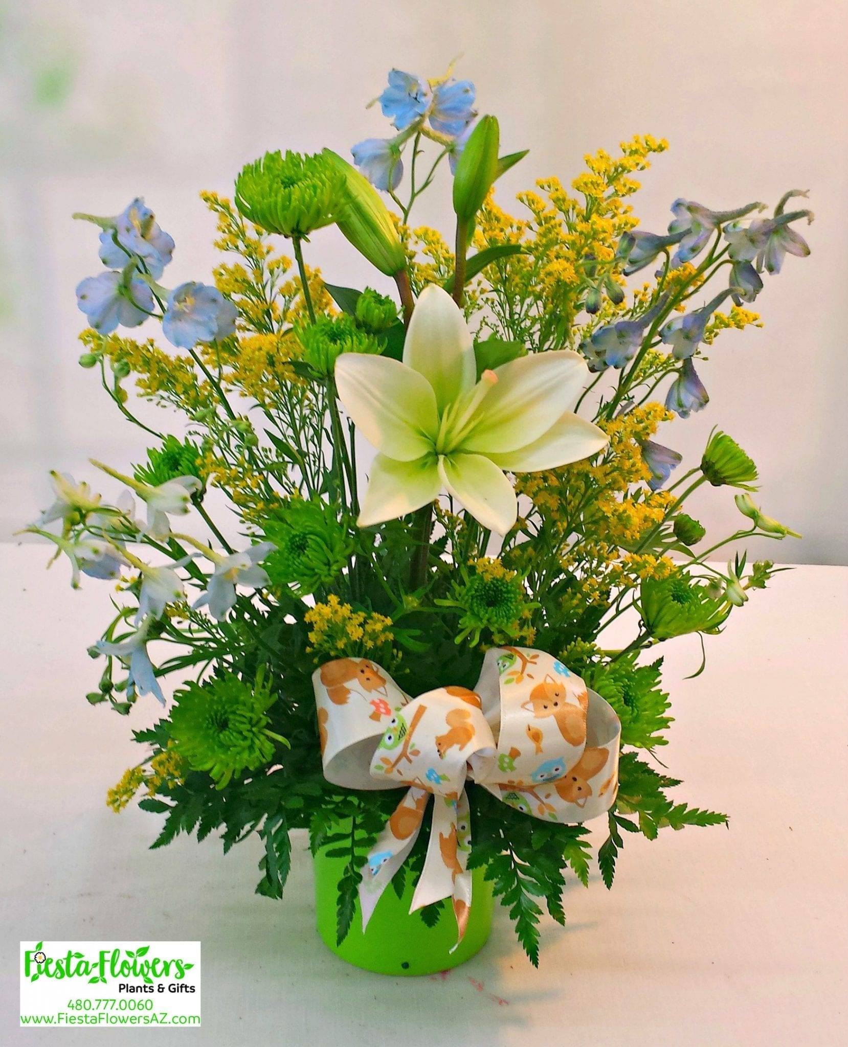 Baby Boy Smiles [IF-821] - Fiesta Flowers Plants & Gifts