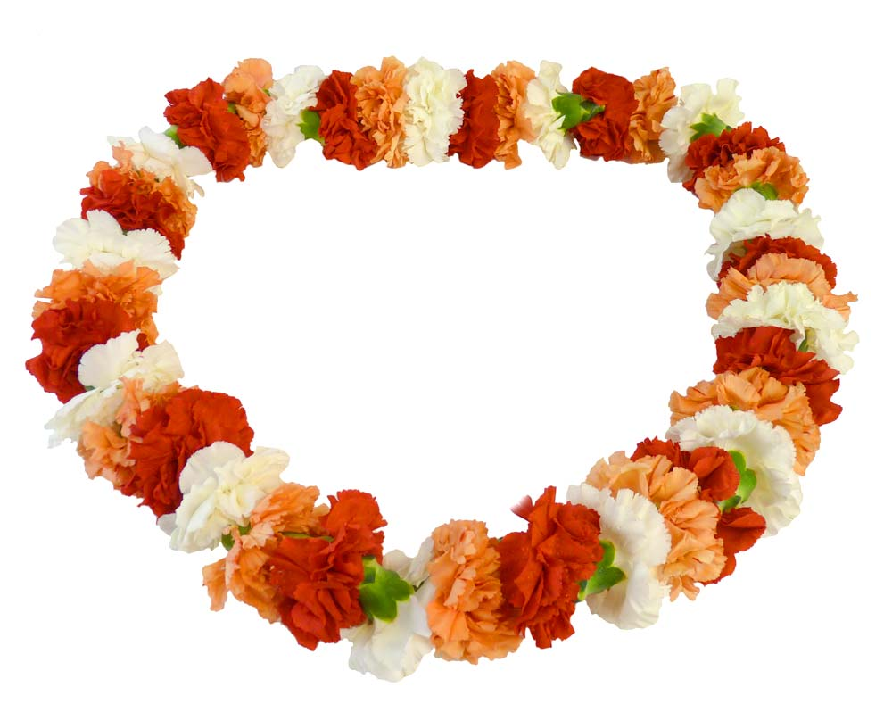 Carnation Lei Choose Any Color Carnations Fiesta Flowers Plants